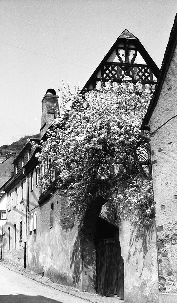 Kobern, Fachwerkhaus in der Kirchstraße, 1958, Heinrich Wolf Frühling an der Mosel (2)