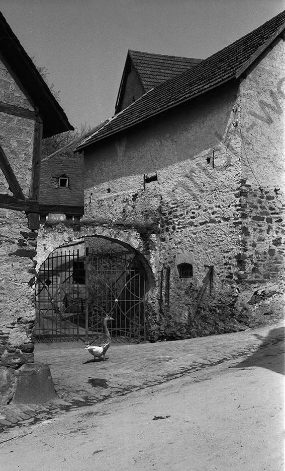 Kobern,Burgmühle im Mühlental, heute Alte Mühle Thomas Höreth, 1958, Heinrich Wolf Frühling an der Mosel