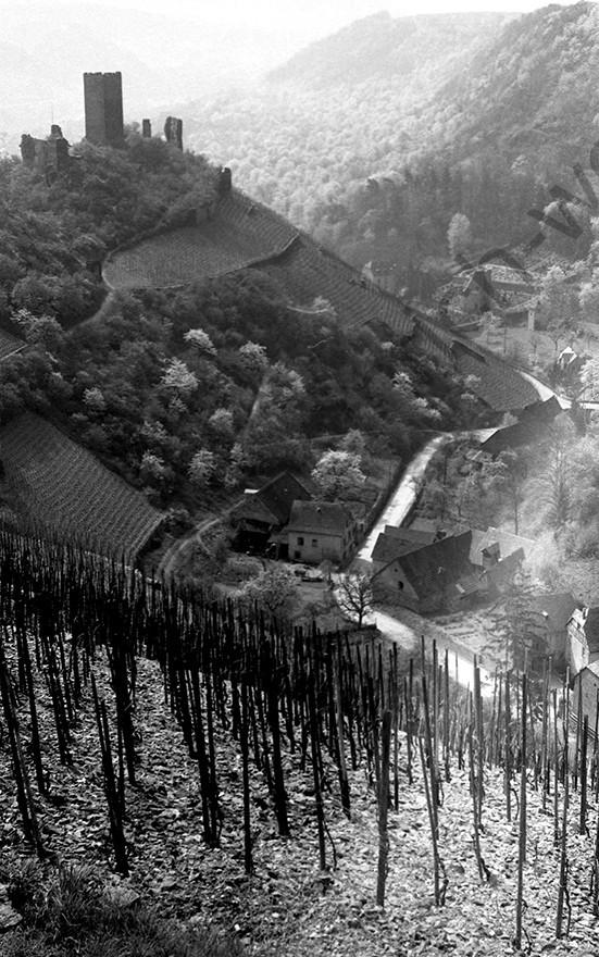 Kobern, Blick von der Oberburg auf das Mühlental, 1958, Heinrich Wolf Frühling an der Mosel